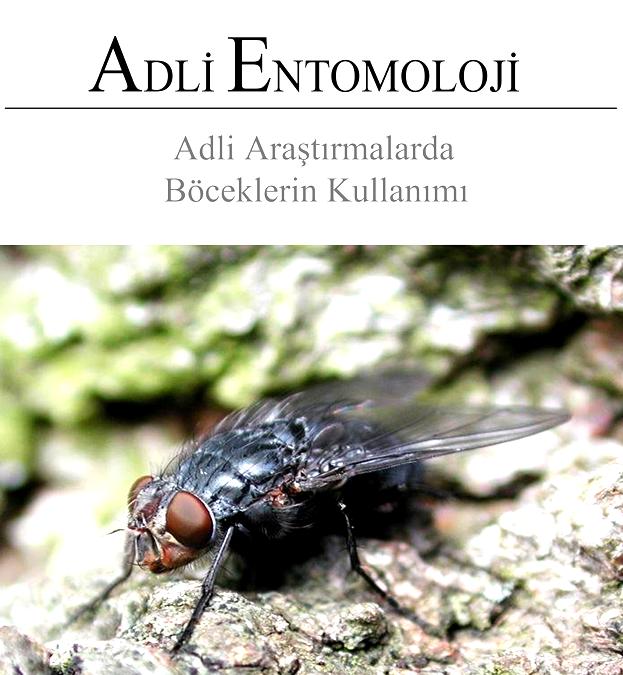 Adli Entomoloji, Adli Bilgiler